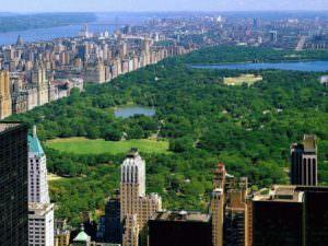 New York - центральный парк