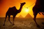 Туристический Египет: путешествуем в песках