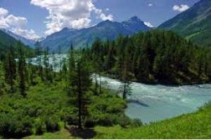 Комфортный и здоровый отдых на Алтае