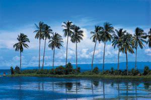 Гавайский остров как лучшее место для отдыха