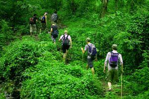 Какие опасности ждут туриста в экзотических странах