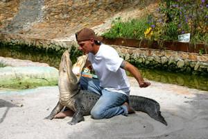 Заповедник дикой природы «Эверглейдс»