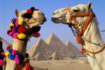 Советы для отдыхающего в Египте