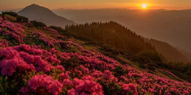 Мармаросы — Гуцульские Альпы