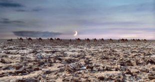Даллол - место перманентного конфликта за «белое золото» Африки - соль